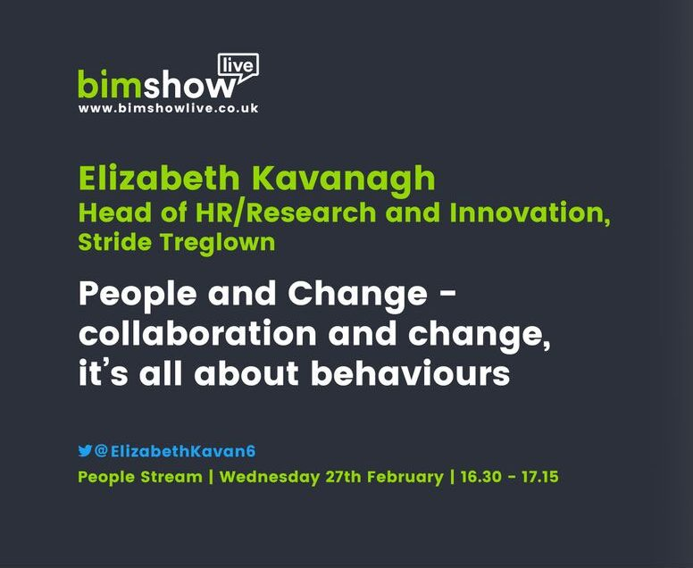 HR expert Elizabeth Kavanagh talks about how BIM is for the people